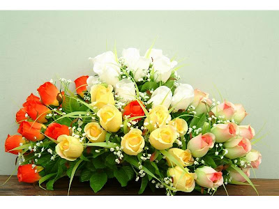 fotos de flores - rosas hermosas
