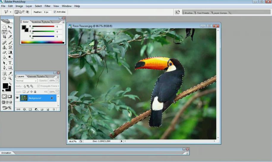 Adobe Photoshop CC - Download