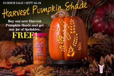 Pink Zebra Harvest Pumpkin Shade image