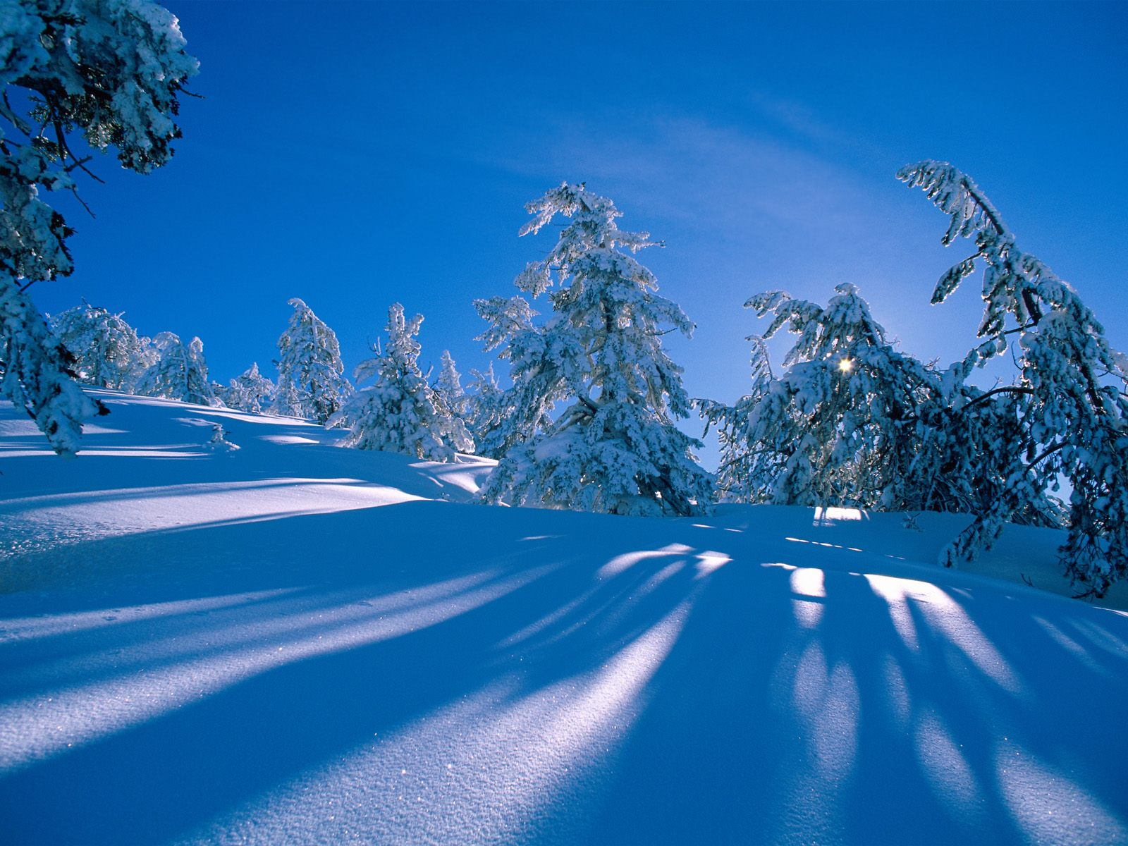 winter desktop backgrounds free wallpapers for pc