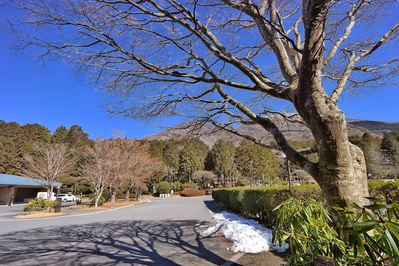 """<a href=""""http://mataram.info/things-to-do-in-bali/visitindonesia-banda-marine-life-the-paradise-of-diving-topographic-point-inward-fundamental-maluku/"""">Indonesia</a>best destinations : Placidity Inward Hakone: Prince Hakone In Addition To Onsen"""