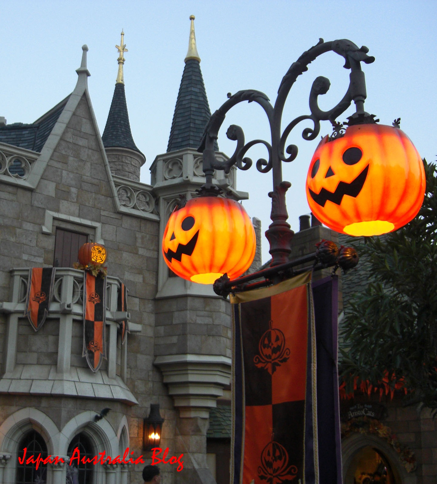 in popularity with more and more cities towns shopping centers and theme parks displaying colourful halloween decorations and having fun events