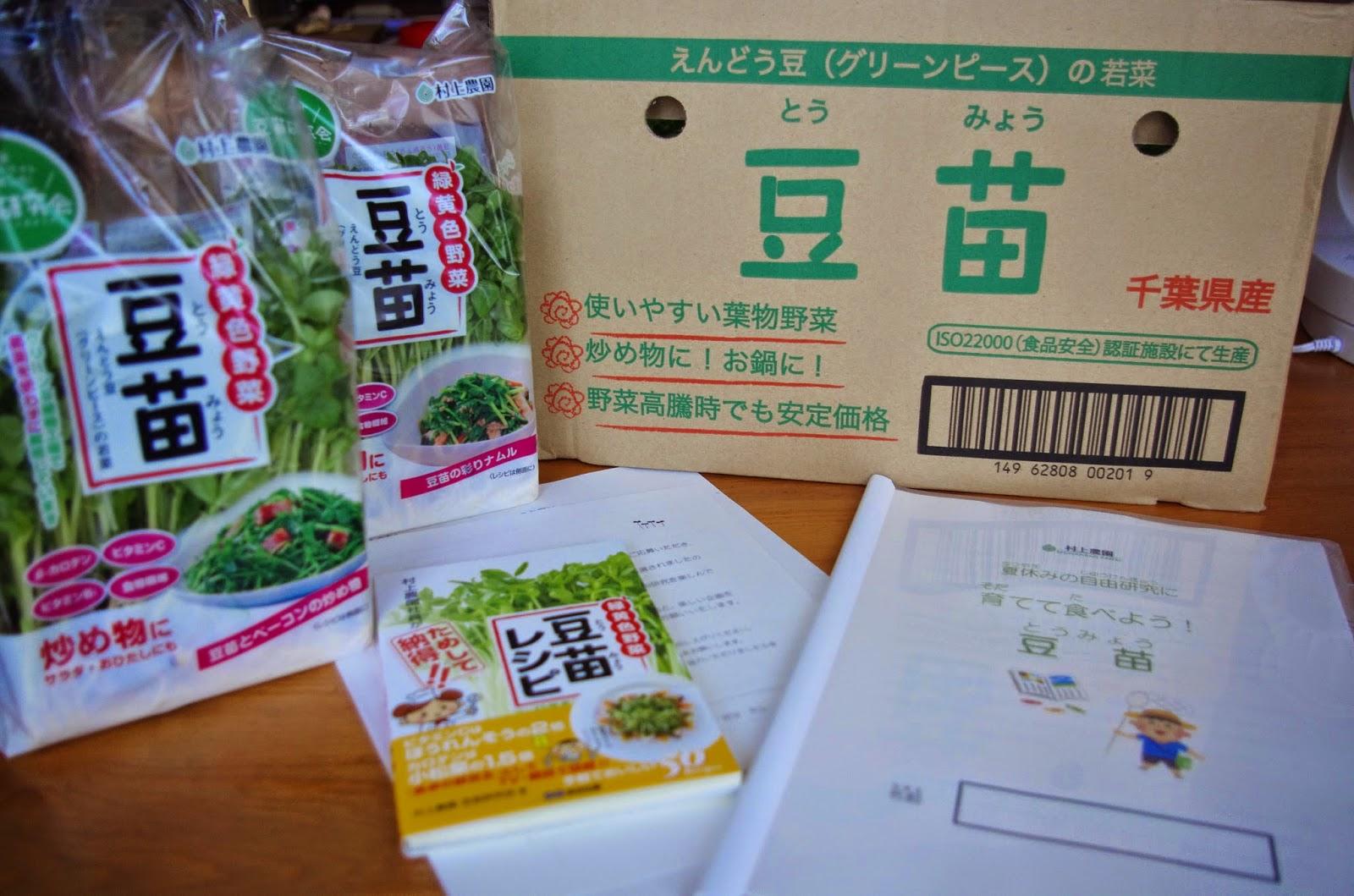 豆苗という野菜をいままで意識 ... : 小学校2年生 自由研究 : 小学校
