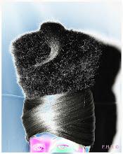 Toque en cheveux 2010 P.H.H ©
