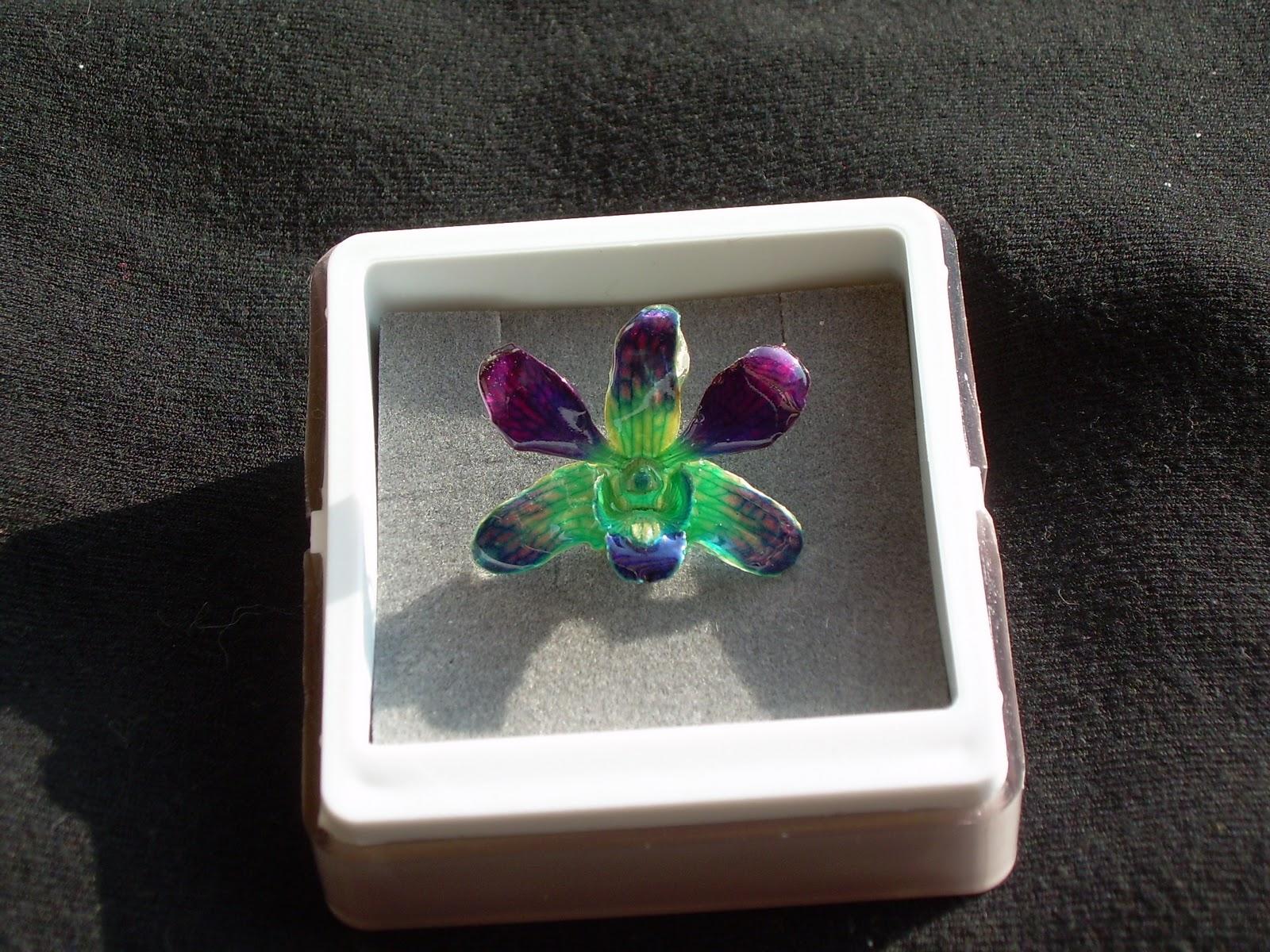Orch 39 idea monili di vere orchidee in resina for Costo orchidea