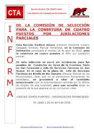 DE LA COMISIÓN DE SELECCIÓN PARA LA COBERTURA DE CUATRO PUESTOS POR JUBILACIONES PARCIALES