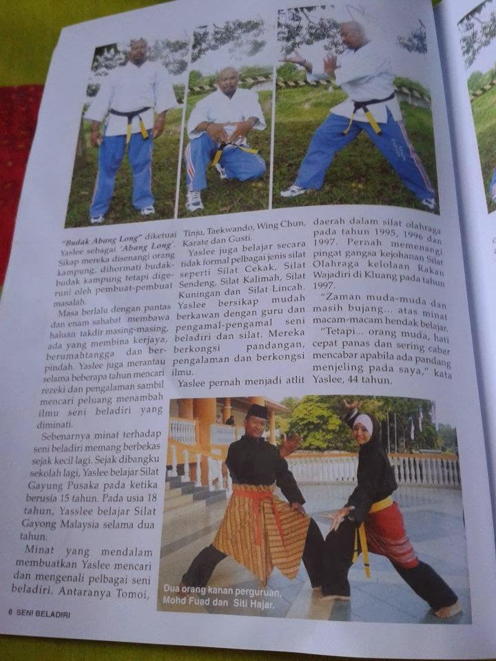 Majalah SeniBeladiri Nov 2011