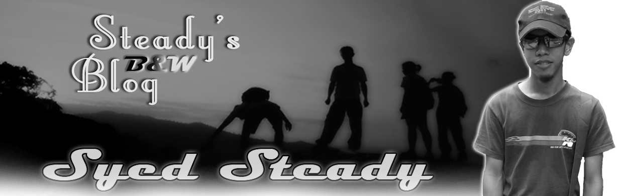 Steady's Blog