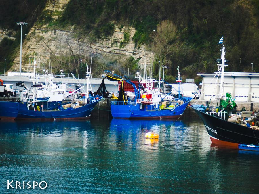 barcos faenando en puerto pesquero de hondarribia