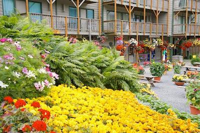 Taman Bunga Untuk Rumah Minimalis