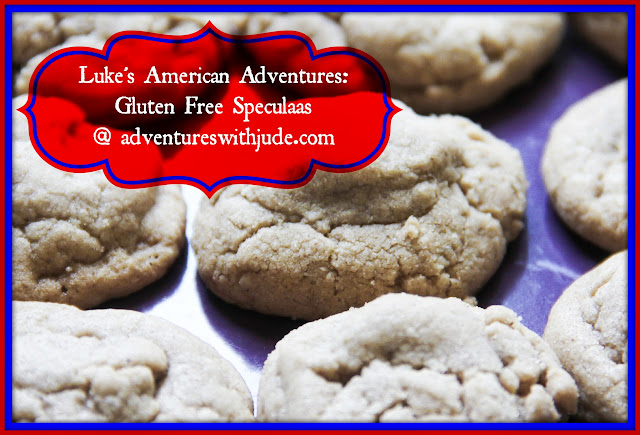 gluten dairy free speculaas spice cookies