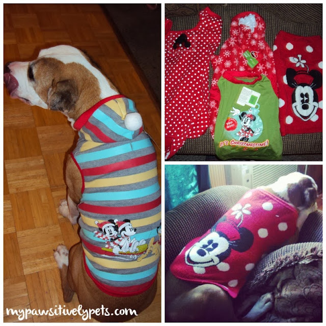 Disney Dog Clothes from PetSmart