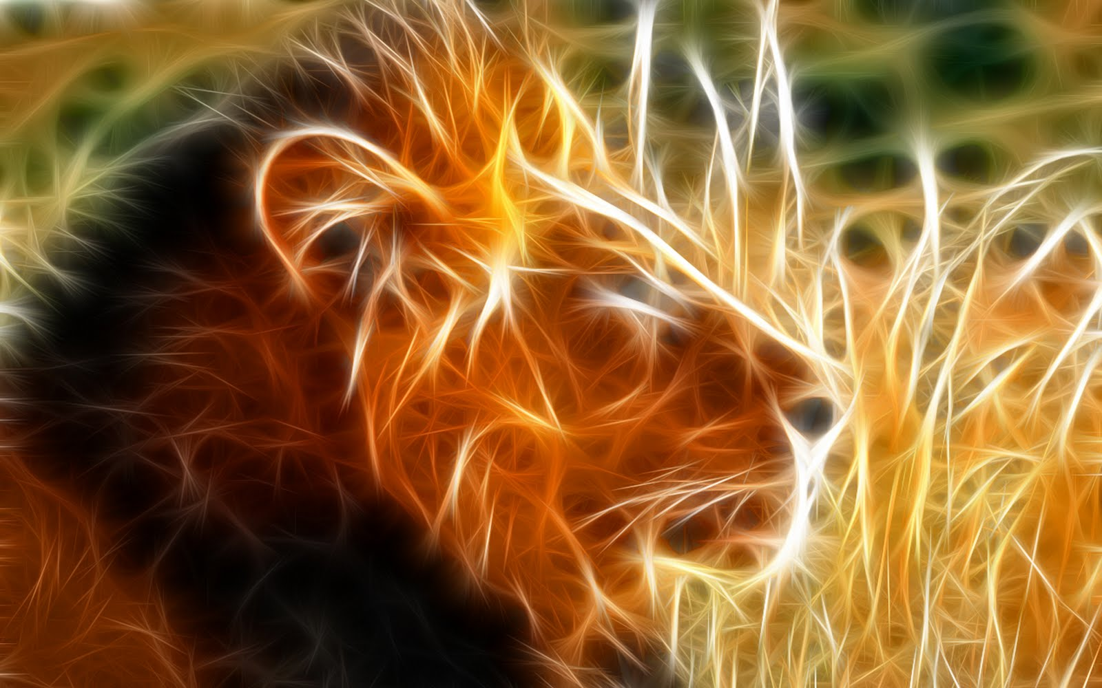 Abstract Lion HD Wallpapers |