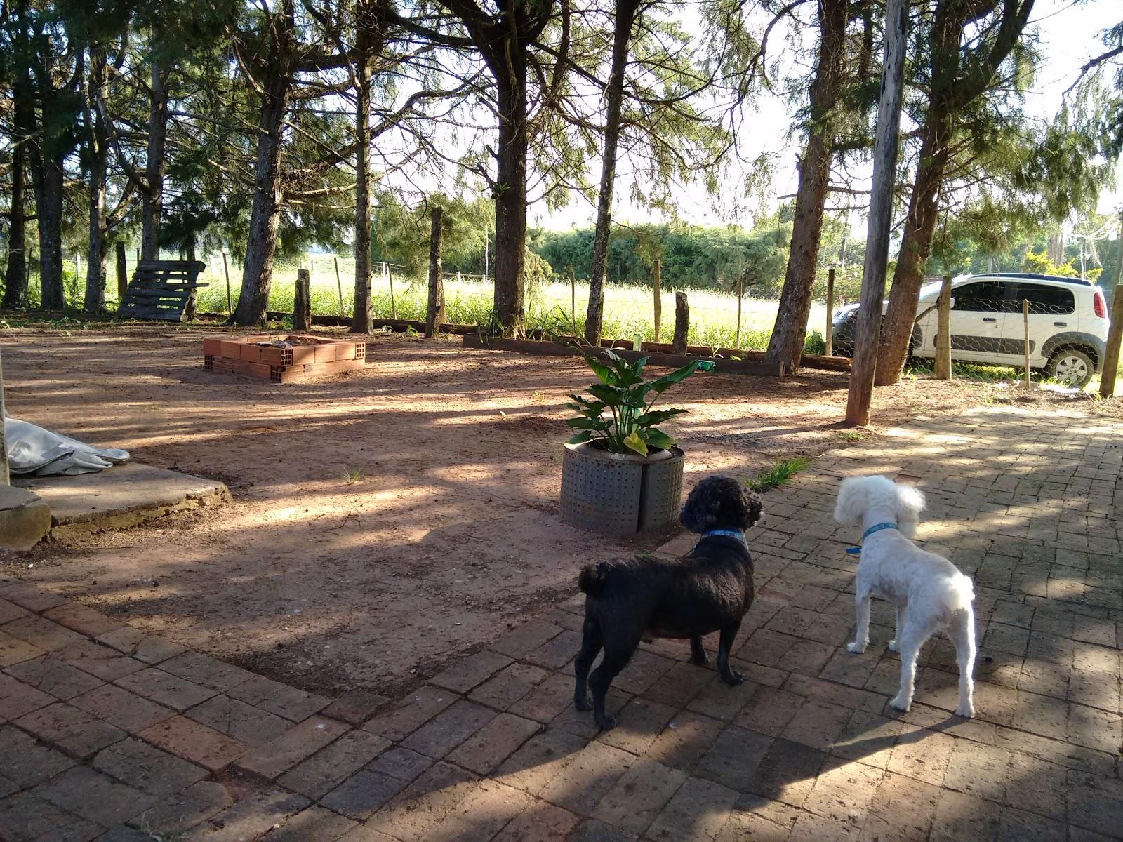 Floquinho and Picolino on farm house