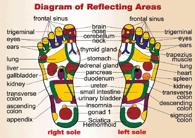 footv1 1 Urut Tradisional Refleksologi Dan Jenis Jenisnya