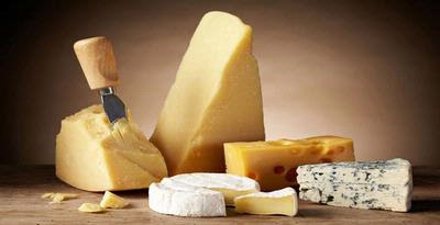 Benefits Cheese for Oral Health