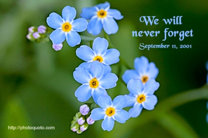 September Eleven Quotes