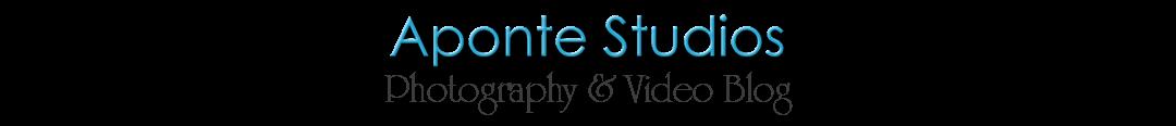 Aponte Studios Blog