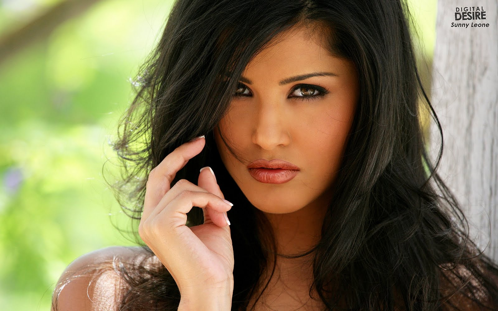 Sunny leones hd wallpapers hd wallpapers backgrounds photos pictures image pc - Sunny leone full hd wallpaper ...