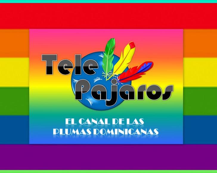 TelePAJAROS, El Canal de las Plumas Dominicanas!
