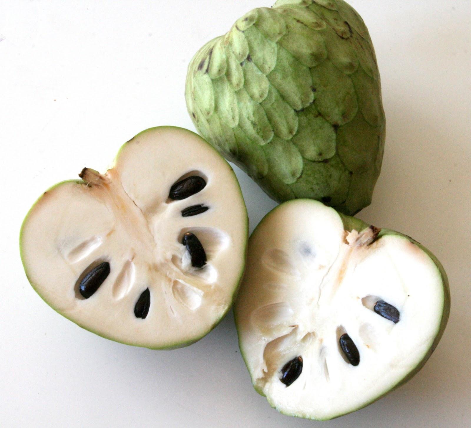 ... Gourmet: Receita de papinha para bebês- Mousse de Atemoya e Avocado