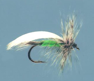 Green bodied dry sedge fly with grizzly hackle and white mallard downwing