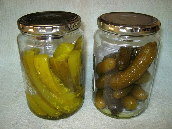 ... Pickle-Flavored Zucchini Squash Chips and Dried Pickle Recipes Made in