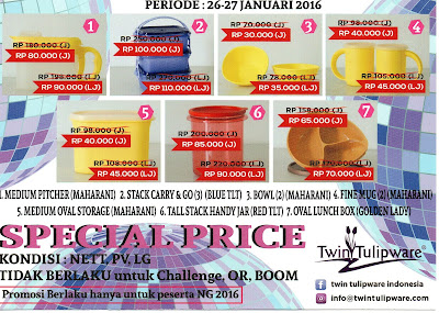 Special Price National Gathering 2016 Twin Tulipware