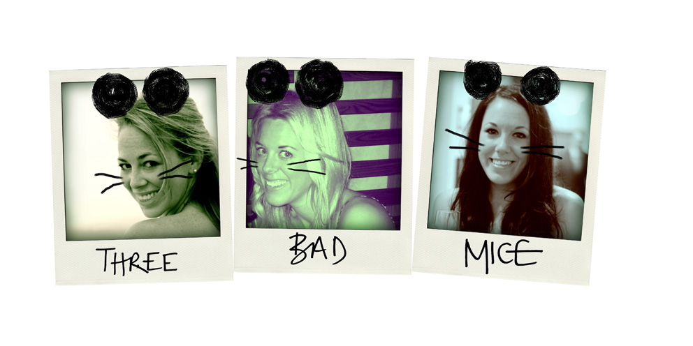 Three Bad Mice