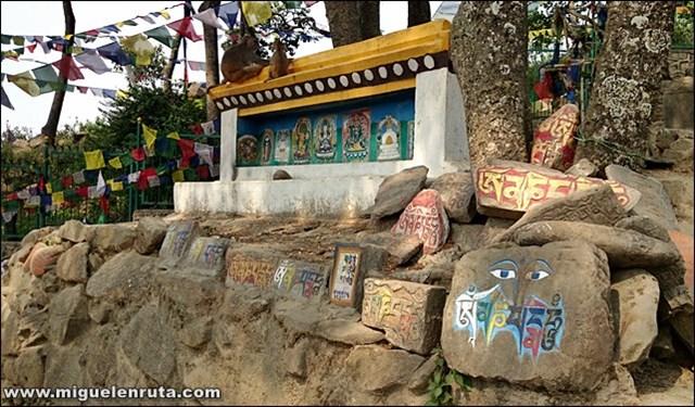 Swayambhunath-Temple-Katmandú-Nepal_2