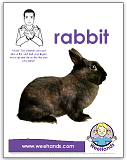 Baby sign language, rabbit, bunny, poster