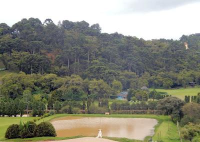 O cãozinho admira a paisagem, como se ela fosse só dele. Nós também ficamos bem impressionados com Monte Verde.