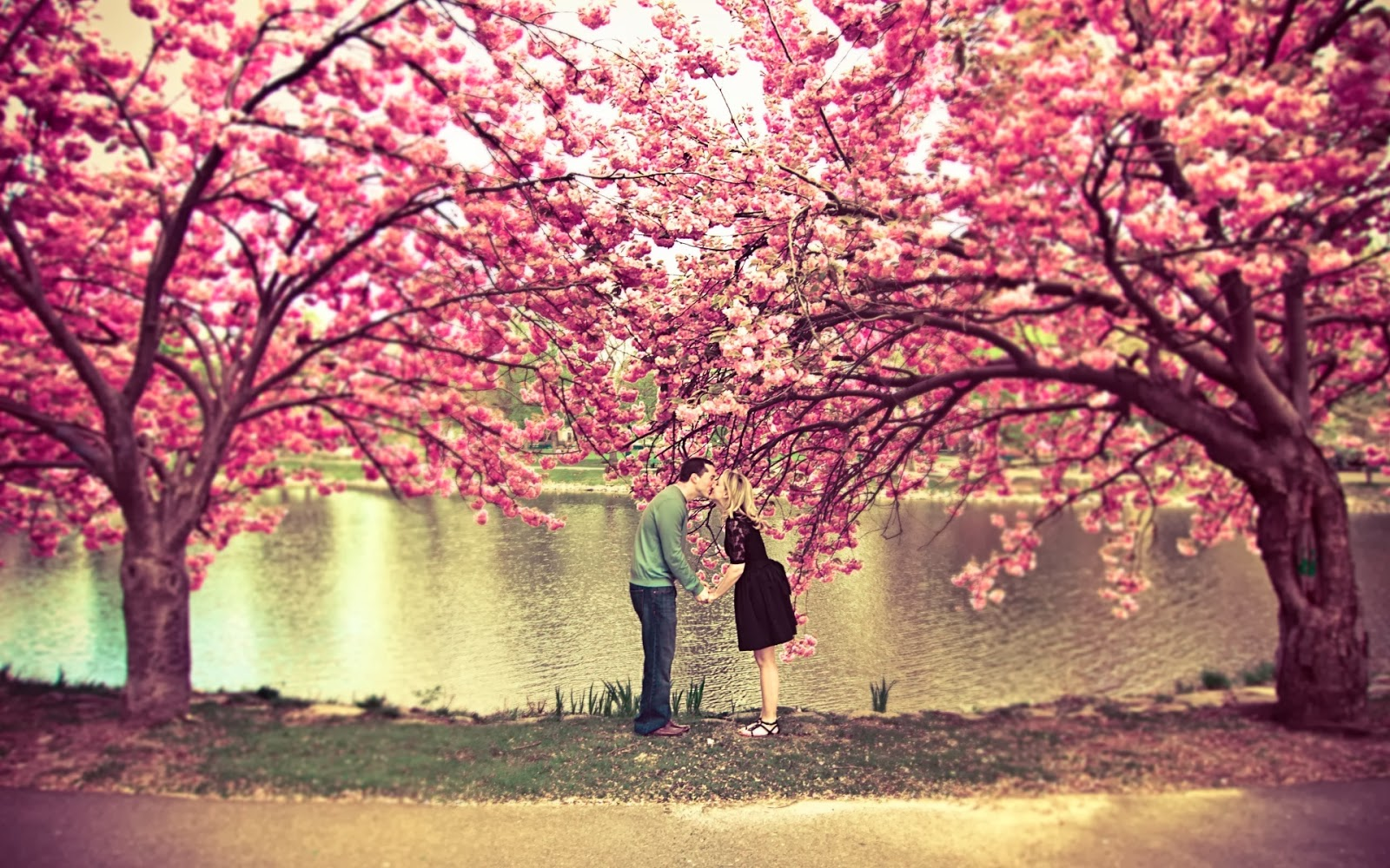 Love-pair-man-kisses-womenat-park-romantic-picture.jpg