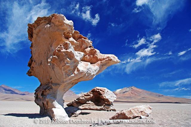 arbol de piedra em lipez bolivia