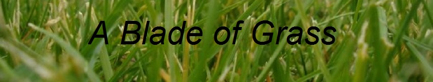 A Blade of Grass