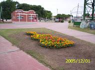 CALLE ANGOSTA 2005