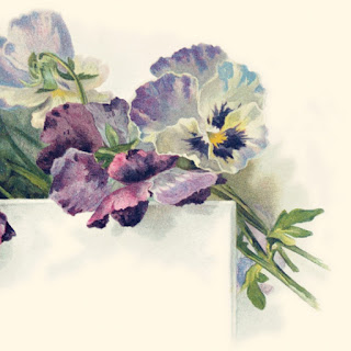 Vintage pansies wedding invitation close up