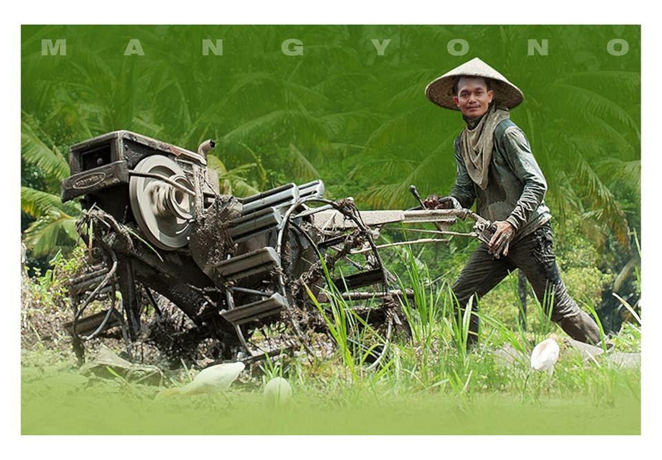 Membajak dengan traktor