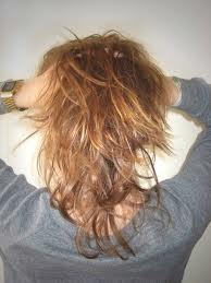 cheveux+secs+femme