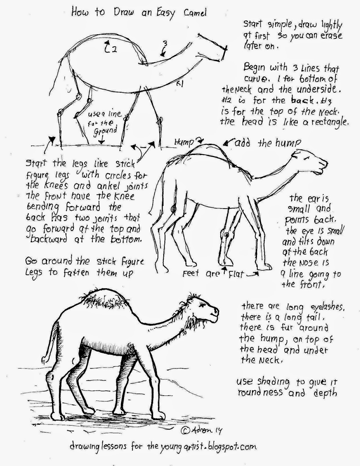 A printable how to worksheet for drawing a camel