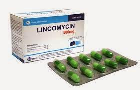 DOSIS OBAT LINCOMYCIN Obat Generik Kapsul (Lincomycin)