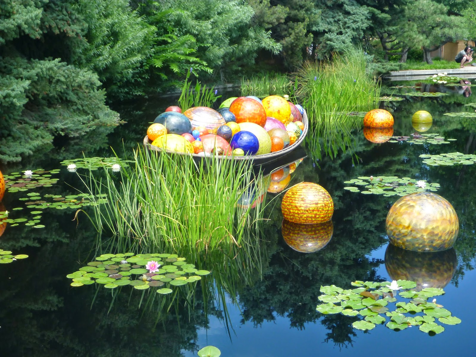 Artistic Journeys Chihuly Exhibit At The Denver Botanic Gardens