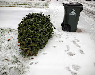 put tree out with the trash on your day during the week of Jan 11