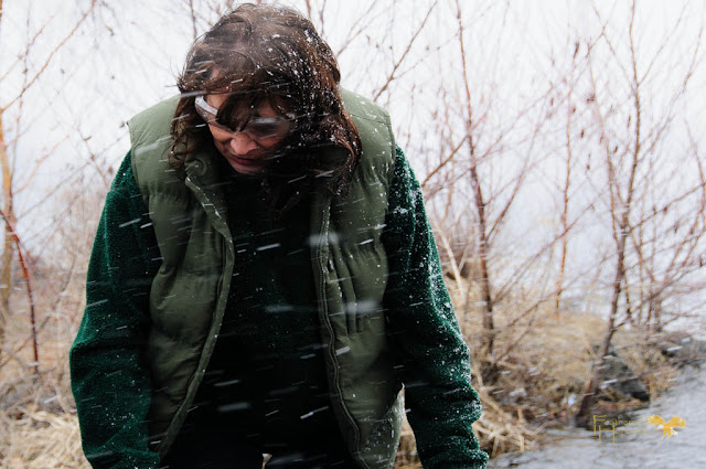 Marge Gibson of Raptor Education Group prepares to release a rehabilitated Common Loon during a sudden snow squall on Lake Wausau.