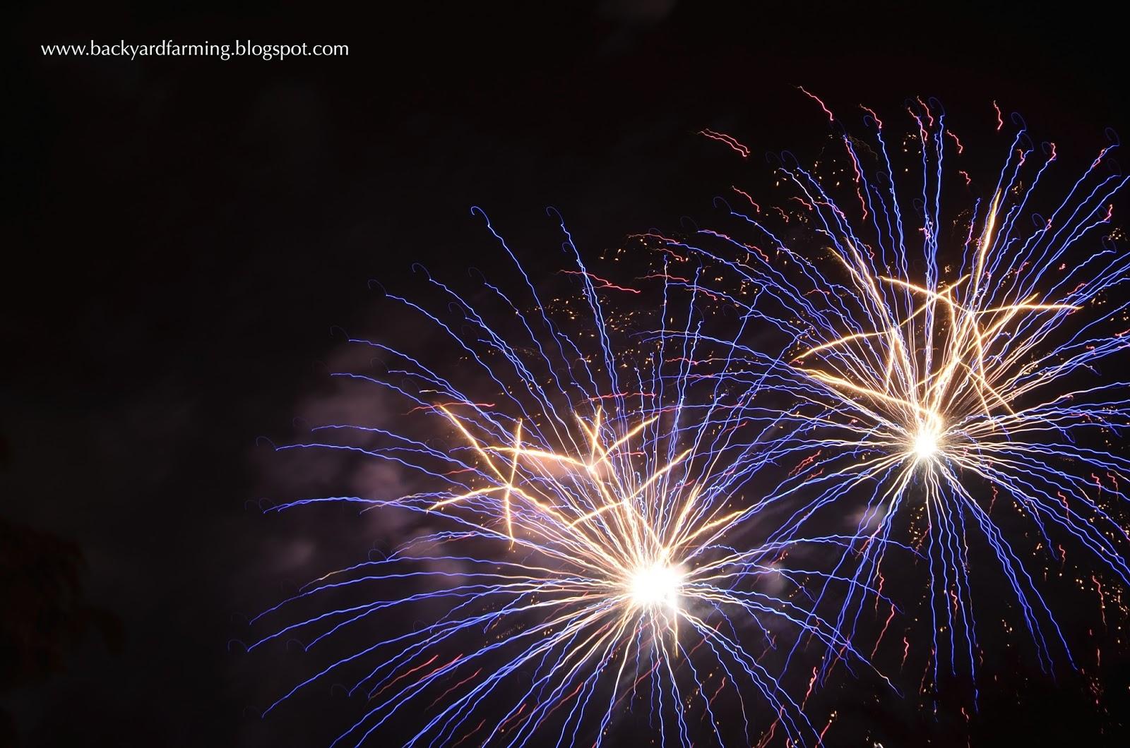backyard farming garden fireworks