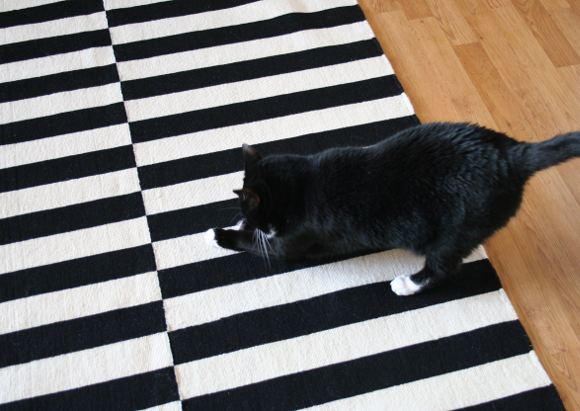 ... white IKEA Virring rug which the cats also scratch, but because itu0027s a low  pile rug, their nails