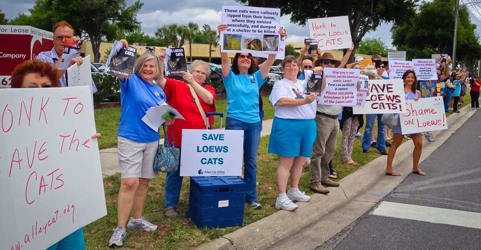 The Protest Against Loews Universal Orlando Hotels