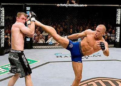 ufc mma fighters gsp george rush st pierre vs matt hughes picture image