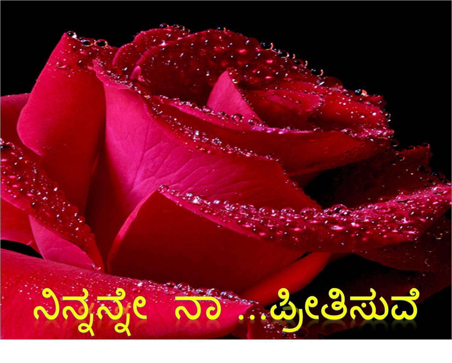 Открытка « Розы для Тебя»