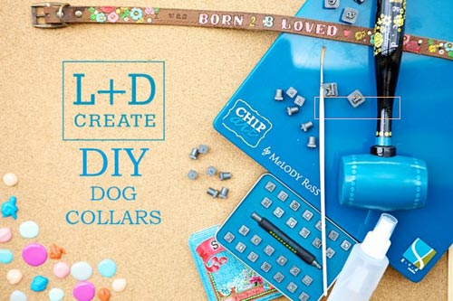 If you would like to make your own dog collars, you'll need to stock up on supplies including heavy-duty thread, vinyl, leather, buckles, rings, gems, and studs. Industrial-strength sewing machines and hand-tools to attach the hardware will also be required.